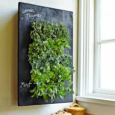 turn your wall green with grovert living wall planter  living