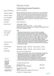 Advertising Executive Resume Sample