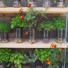 outdoor garden ideas. Budget-garden-ideas-plastic-bottles Outdoor Garden Ideas P