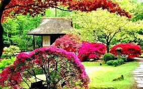 beautiful backyard gardens beautiful backyard gardens inspirational and beautiful backyard gardens 9 beautiful backyard ponds and beautiful backyard