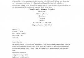 Beginner Resume Template Resume Template