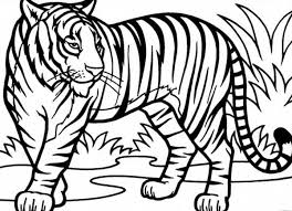 Small Picture Tiger Printable Coloring Pages FunyColoring