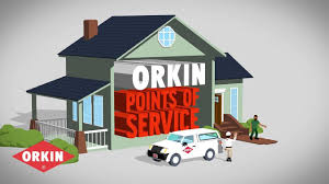 orkin flea treatment cost. Fine Flea What To Expect From Orkin Pest Control On Flea Treatment Cost