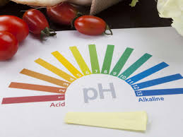Fruit And Vegetable Acidity Chart Are Acidic Foods Harmful To Health