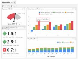 Sample Financial Reports Custom Executive Dashboards Reports For The Modern CEO