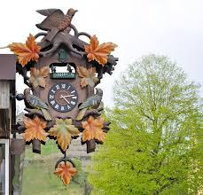how kooky are cuckoo clocks wonderopolis how kooky are cuckoo clocks