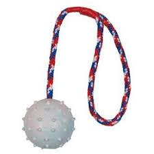 <b>Мяч Trixie для</b> собак на веревке 30 см Ф6 см