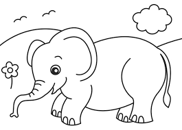 Small Picture 2o Awesome Jungle Coloring Pages