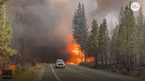 Tamarack Fire in California spreads ...