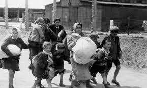 Image result for holocaust photos