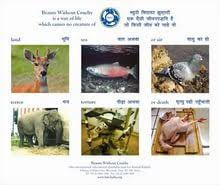 essay on beauty out cruelty towards animals  essay on beauty out cruelty towards animals