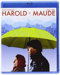 I Think I See The Light Harold And Maude Harold E Maude Blu Ray Blu_ray Italian Import Amazon Co