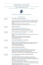 co founder and executive director resume samples executive director resume sample