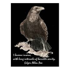 best edgar allen poe images edgar allen poe edgar allen poe insanity quote designed for you by country mouse studio