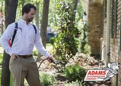 adams exterminating denton. Contemporary Adams Adams Exterminating Co  Denton TX To Denton