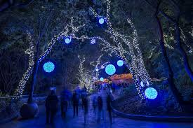 Oakland Zoo Lights 2014 Hewan Lucu Terbaru Zoo Lights Tickets Images