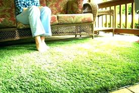 area rug that looks like grass green for indoor outdoor