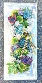vertical wall decor succulents wall decor framed succulent wall art x framed succulent vertical by on