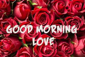 lovely good morning wallpaper morning my love