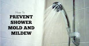 house cleaning how to prevent shower mold and mildew