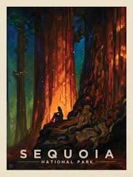 National Parks Posters Anderson Design Group Anderson Design Group American National Parks Sequoia