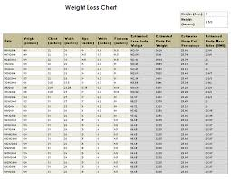 9 Best Images Of Sample Weight Loss Chart - Free Printable Weight ...