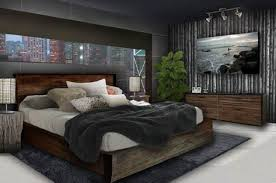 Creativity Bedroom Ideas For Young Adults Men Adult Male Design Pinterest Bedrooms On