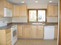 Minneapolis Kitchen Remodeling Minimizing Budget Kitchen Remodel Kitchen Ideas