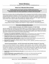 Modern Business Resume Template Modern Business Development Manager Logistics Resume Construction