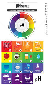 Universal Indicator Ph Color Chart Ph Scale Universal Indicator Color Chart Diagram Stock