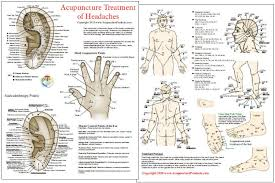 Headache Acupressure Points Chart Acupuncture Acupressure Treatment Of Headaches Chart