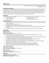 Resume Format For Data Analyst Awesome Financial Analyst Visual
