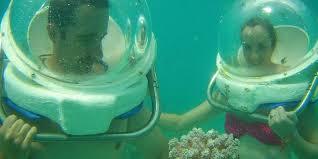 under sea water essay life under sea water essay