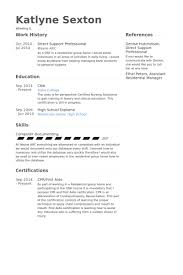 ... Superb Direct Support Professional Resume 9 Direct Support Professional  Resume Samples ...