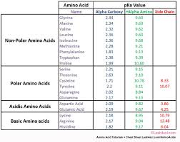Pka Amino Acids Table Amino Acids Biochemistry Chemistry