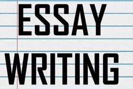 here importance of the essay writing services