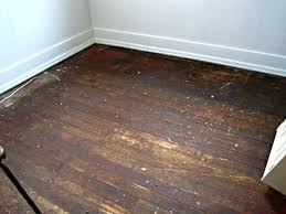 remove glue from wood remove adhesive from wood floor elegant remove adhesive from wood floor simple