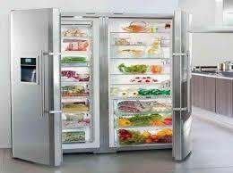 refrigerator and freezer. full fridge and freezer | size refrigerator with the vegeteble o