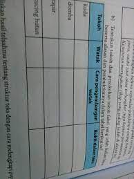 Adapun fokus pembahasan soal ulangan kenaikan kelas mata pelajaran ilmu pengetahuan sosial (ips). Tugas Individu Bahasa Indonesia Kelas 8 Halaman 6 Cara Golden