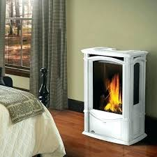 modern gas stove fireplace. Free Standing Gas Stove Fireplace Modern Napoleon Castlemore