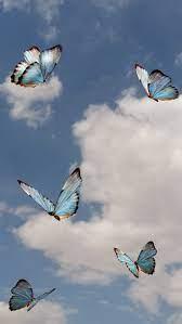 butterfly sky #clouds #butterflies ...