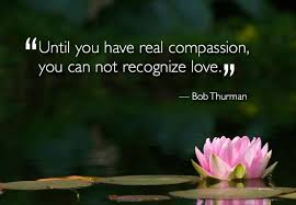 Compassion Quotes Delectable Compassion Quotes Best Love Compassion Quotes By Bob Thurman