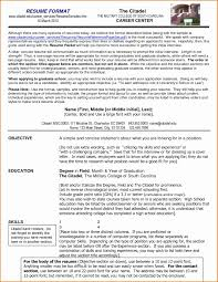 Most Successful Resume Template Resume Template Format Literarywondrous Sample Templates Lovely 45