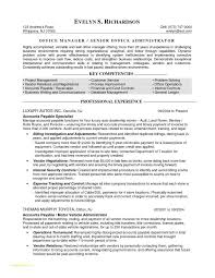 Resume Templates For Finance Professionals Or Sample Resume