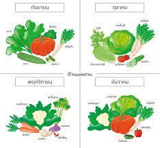 ปฏิทินปลูกผักสวนครัว อย่างไรให้มีผักกินทั้งปี-บ้านและสวน