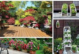 Small Picture Awesome Patio Pot Plants Ideas 13 Container Gardening Ideas Potted