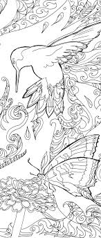 printable coloring pages coloring book hummingbird colibri art hand drawn colouring pages elephant