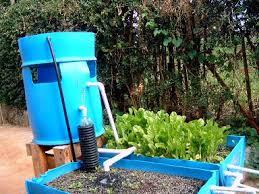 aquaponic gardening. \ aquaponic gardening