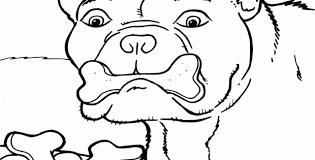 Poes Kleurplaat Uniek Leuke Kleurplaten Beste Van Pag 3 Honden En