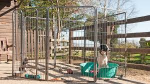 best outdoor dog pens exercise pens for dogs